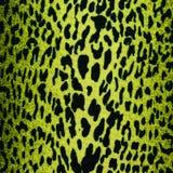 绿色豹子,捷豹汽车,天猫座皮肤背景 免版税库存照片