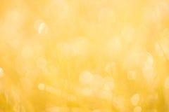 黄色软的焦点背景 图库摄影
