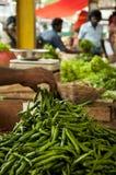 绿色辣椒在市场上在科伦坡,斯里兰卡 免版税库存图片