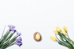 黄色郁金香、紫色虹膜和巢用复活节彩蛋在白色 免版税库存图片