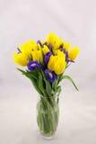黄色郁金香和蓝色虹膜,花束 免版税库存照片
