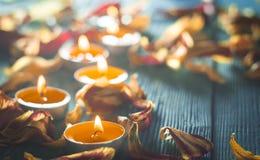 黄色郁金香的干燥瓣围拢的蜡烛和plamennoi 免版税库存照片