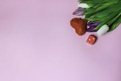 紫色郁金香美丽的花束在桃红色背景的 免版税图库摄影