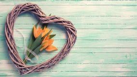 黄色郁金香花和装饰心脏在被绘的绿松石 免版税库存图片