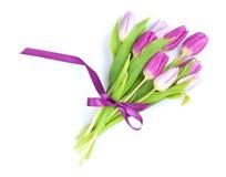 紫色郁金香花束 库存照片