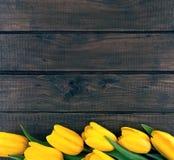 黄色郁金香行在黑暗的土气木背景的 春天fl 免版税库存图片
