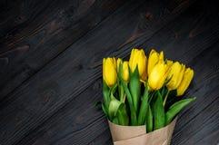 黄色郁金香 免版税图库摄影