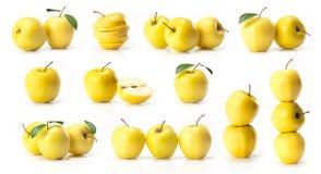 黄色金黄苹果综合  免版税库存图片