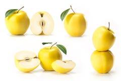 黄色金黄苹果综合  免版税库存照片