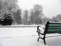 绿色长凳在公园在冬天 免版税库存照片