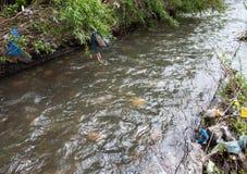 绿色附注污染水 在都市小河银行的垃圾 免版税库存图片