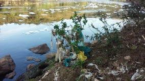 绿色附注污染水 免版税库存图片