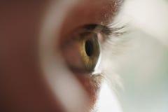 绿色青少年的女孩眼睛特写镜头侧视图 免版税库存照片