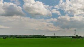 绿色领域和多云天空timelapse 美好的夏天横向 股票视频