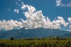 绿色领域和小山在清楚的蓝天 免版税库存照片