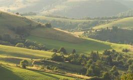 绿色领域和小山 库存图片