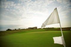 绿色领域和旗子在高尔夫球场 图库摄影