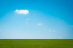 绿色领域和白色云彩在上面蓝天 免版税库存图片