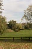 绿色领域和篱芭 库存图片