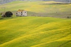 黄色领域和老casale 图库摄影