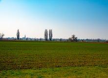 绿色领域和蓝天在早期的春天 免版税图库摄影