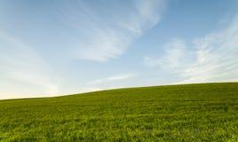 绿色领域和蓝色多云天空环境 免版税库存照片
