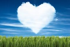 绿色领域在与心脏形状的蓝天下对此 免版税库存照片