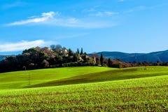 绿色领域在普罗旺斯,法国 图库摄影