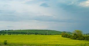绿色领域在蓝天下 免版税库存图片