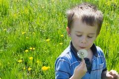 绿色领域的小男孩 免版税库存图片