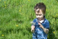 绿色领域的小男孩 图库摄影