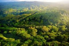 绿色领域鸟瞰图在考艾岛,夏威夷的 免版税库存照片