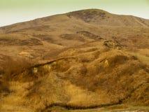 黄色风景日志石头绿色黄色小山 库存照片