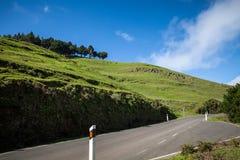 绿色风景 免版税库存图片