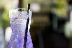 紫色饮料 免版税库存照片