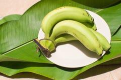 绿色香蕉和香蕉叶子背景 免版税库存图片