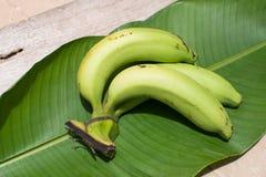 绿色香蕉和香蕉叶子背景 库存照片