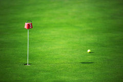 绿色高尔夫球土地和球在孔附近 库存照片