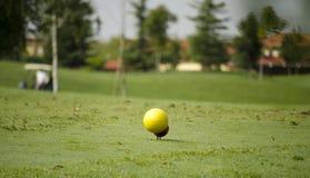 黄色高尔夫球 库存图片