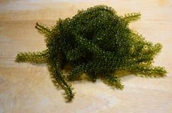 绿色鱼子酱 图库摄影