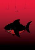 黑色鲨鱼 免版税图库摄影