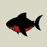 黑色鲨鱼 免版税库存图片