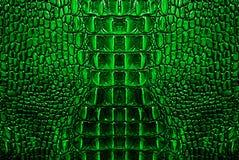 绿色鳄鱼皮革纹理背景 免版税库存图片