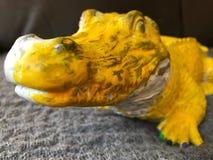 黄色鳄鱼 免版税库存照片