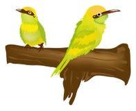 绿色鸟 皇族释放例证