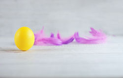 黄色鸡蛋和羽毛 免版税图库摄影
