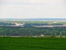 年轻绿色麦子的领域在春天的 免版税库存图片
