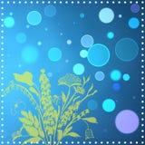 水色,斑点,海草 免版税库存照片
