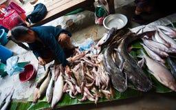 巴色,老挝- 8月12 :一个市场的看法在巴色市是 免版税库存图片