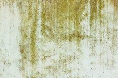 绿色绘了与损坏的和被抓的表面的混凝土墙纹理 抽象背景 免版税库存图片